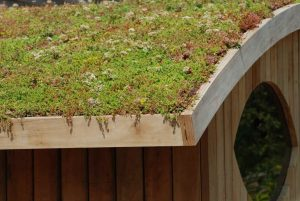 pretty plants make up this green roof above a classy wooden building