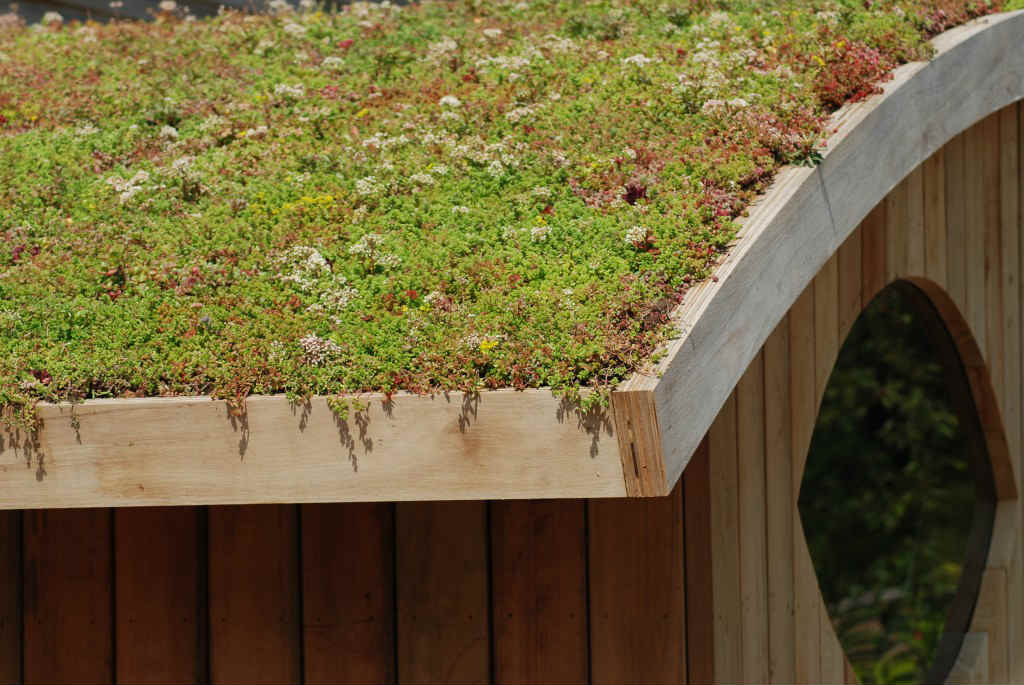 Green Roofs – The Mow Down